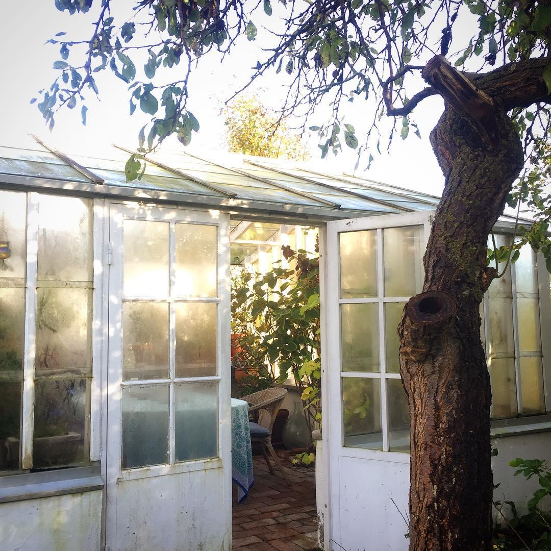 S kom solen ntligen  at home october greenhouse vxthushellip