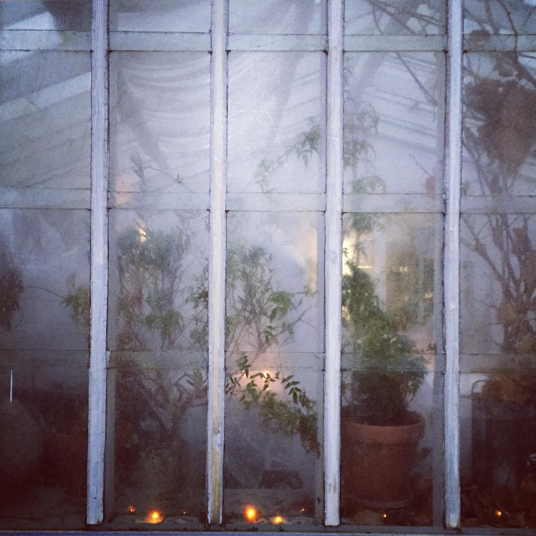 January greenhouse vxthus sweden Continue reading rarr