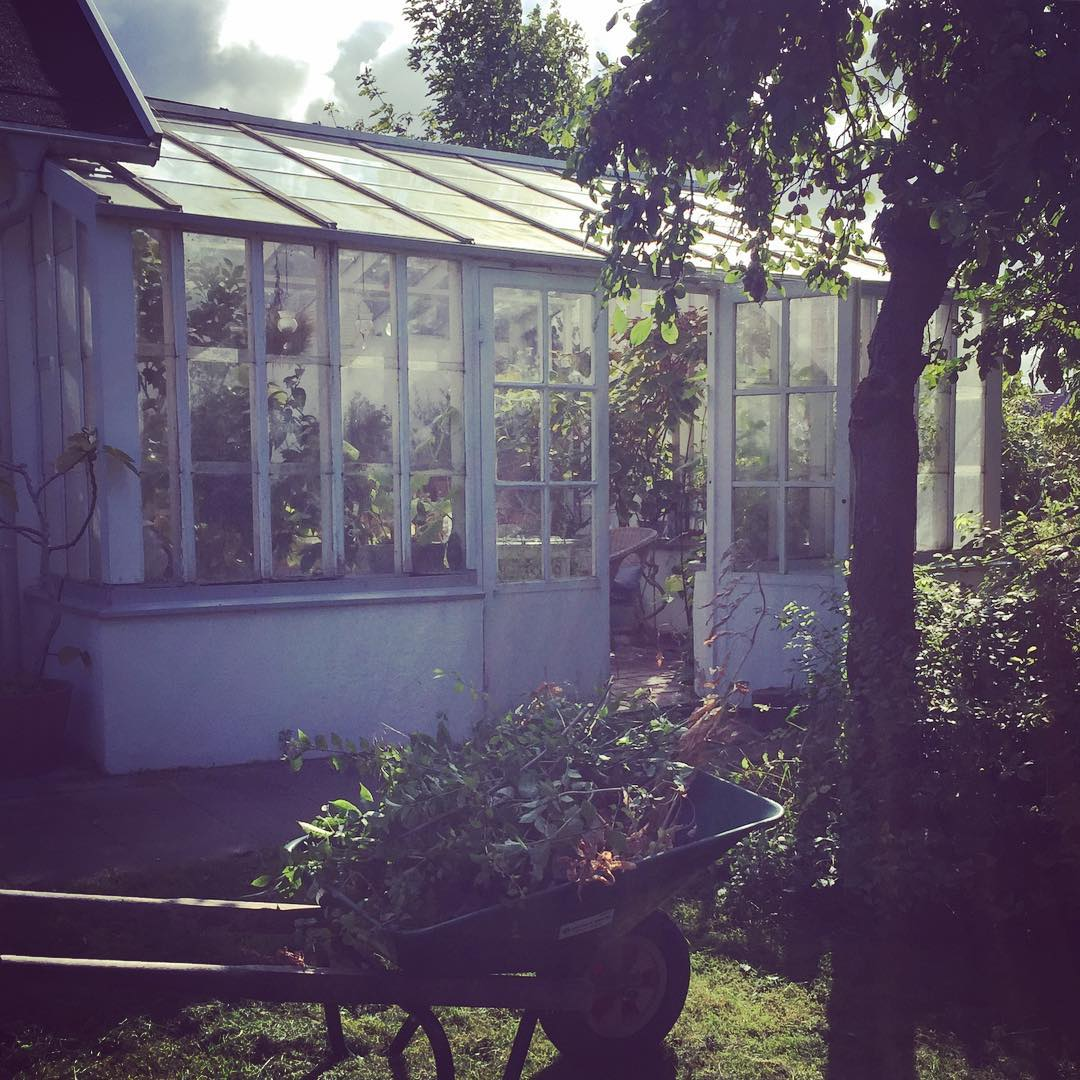 Fixardag  at home greenhouse sweden vxthus Continue reading rarr