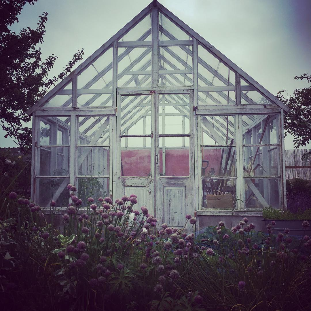Friends beautiful greenhouse! helenetoresdotter Continue reading rarr