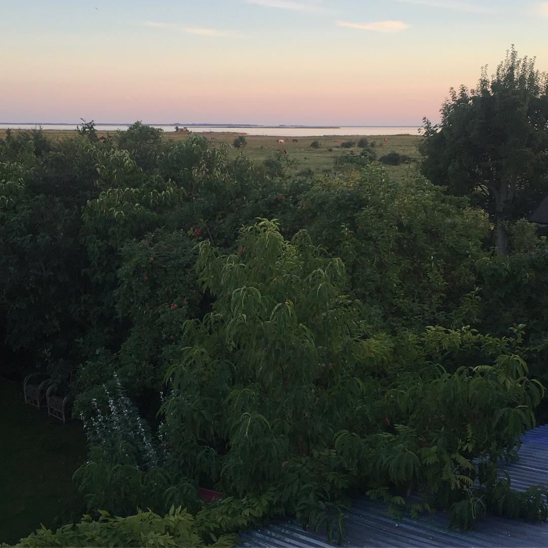 Evening view at home klagshamn sweden underbartaugustivder Continue reading rarr