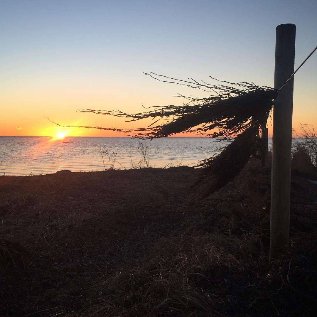 Hrlig solnedgngspromenad och tng p tork  cold and sunnyhellip